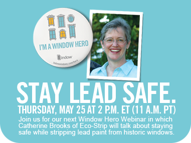 webinar about lead safety