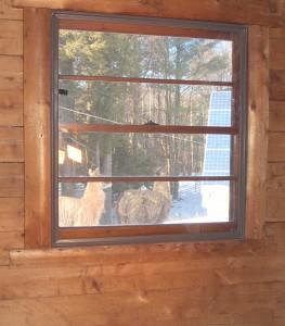 indow window installed