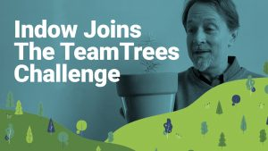 "man holding a potted plant with text that reads ""Indow joins the team trees challenge"""